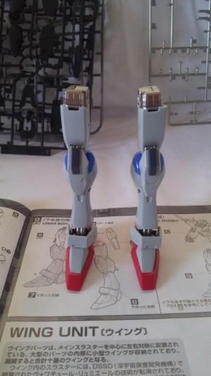 legs front