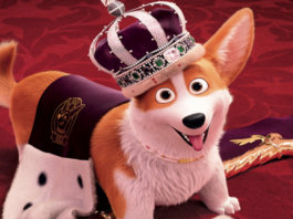 The Queen's Corgi - Gogagah