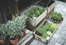 5 Smart Garden Features For The Modern Home