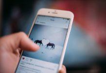 5 Reasons you should not buy Instagram Followers